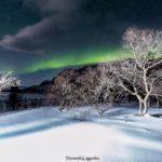 Laponie - Yannick Kegodec